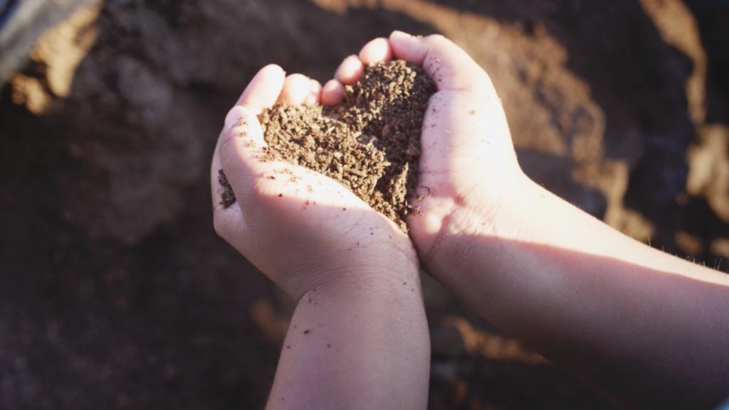 What is Loop? - Environmental Benefits | Loop® Biosolids