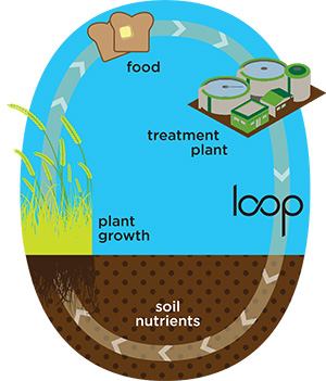 Loop Nutrient Graphic