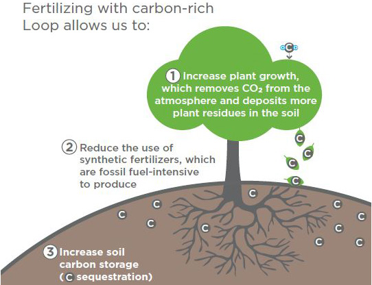 Carbon Diagram cropped